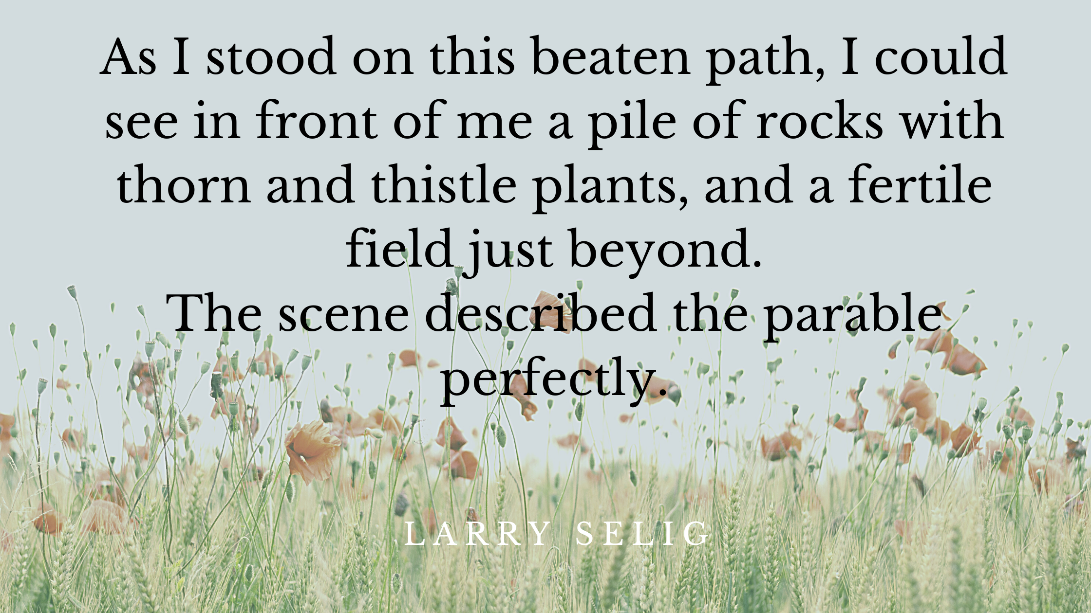 As I stood on this beaten path, I could see in front of me a pile of rocks with thorn and thistle plants, and a fertile field just beyond. The scene d