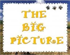 BIG PICTURE